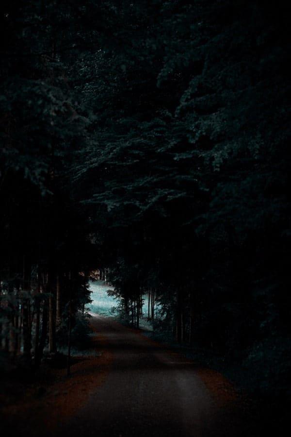 Durchs Dunkel