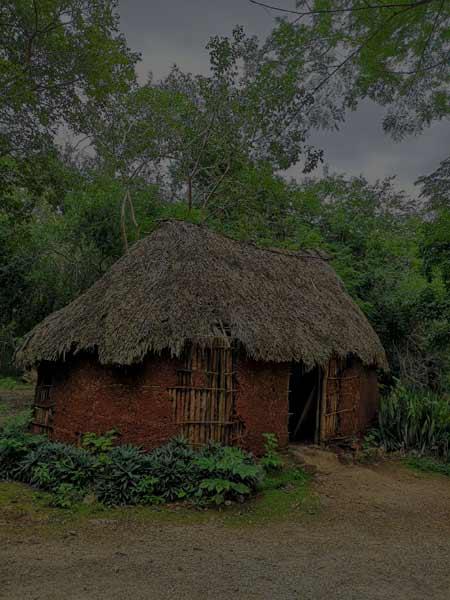 Rückführungstherapie: Strohhütte